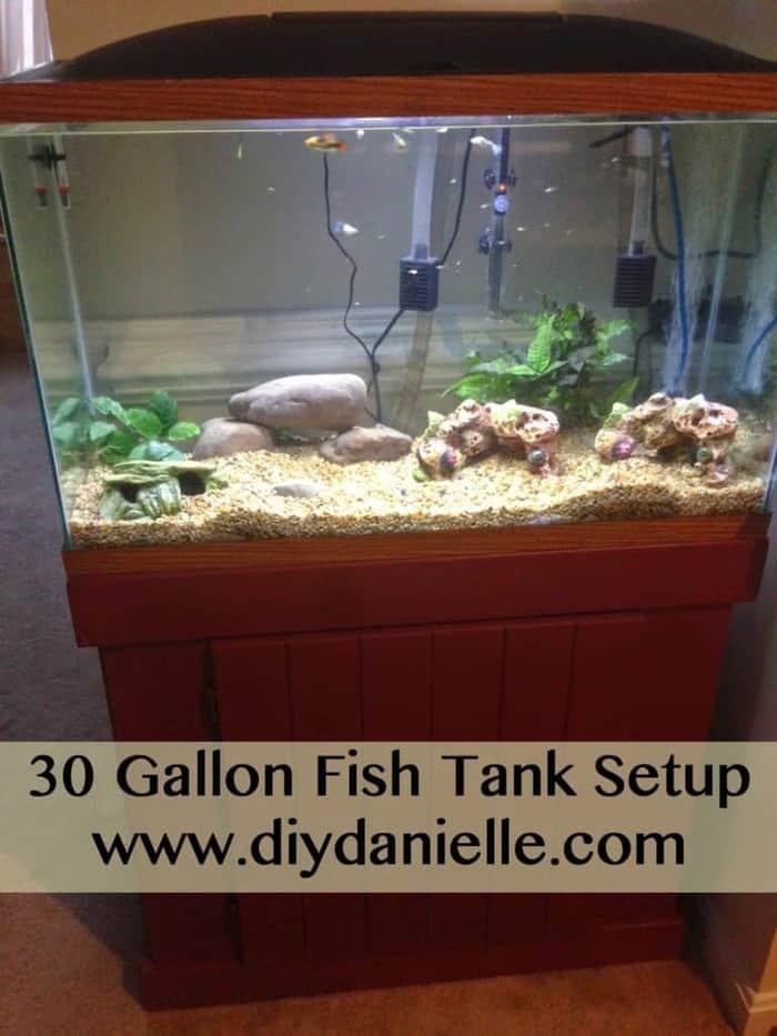 Setting up my 30 gallon fish tank.