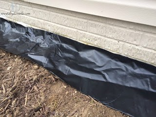 Black plastic for a weed barrier. Not an ideal option.