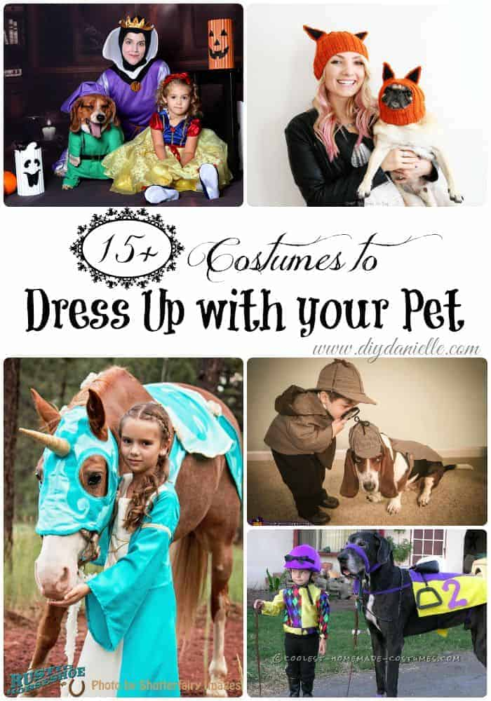 Love to dress up in costumes for Halloween with your favorite four legged companion(s)? This post has 15+ Halloween costume ideas so you can coordinate costumes with your dog, horse, and other family.
