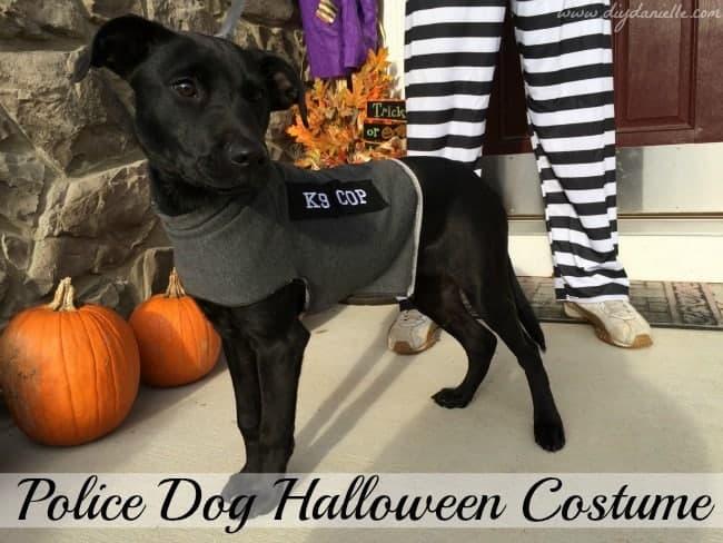DIY Police Dog Halloween Costume