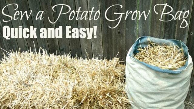 easy potato grow bag