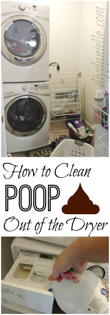 How to Clean Poop Out of the Dryer - DIY Danielle