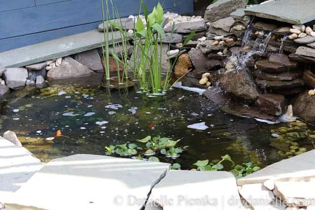 pond planters diy