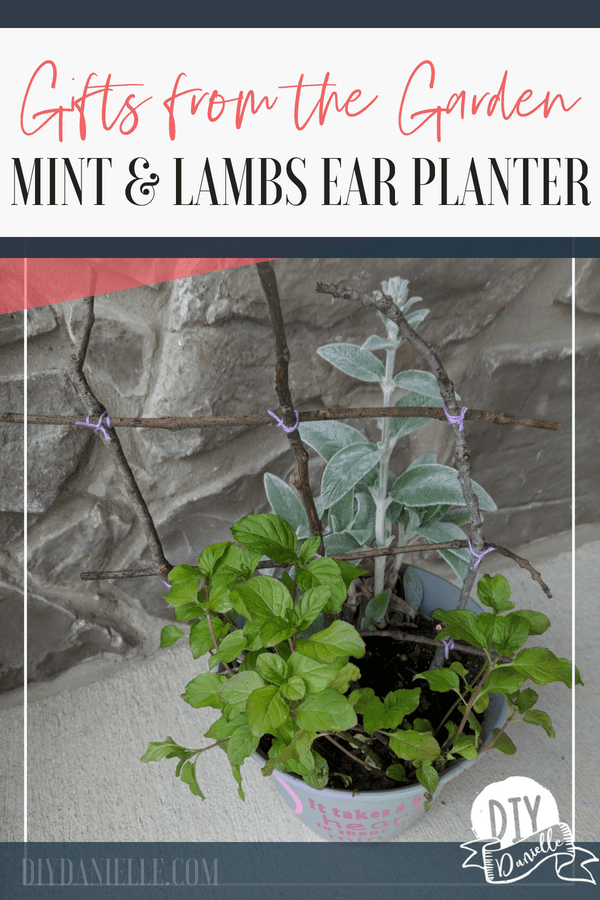 How to make a beautiful arrangement from plants in your garden. These make gorgeous gifts!