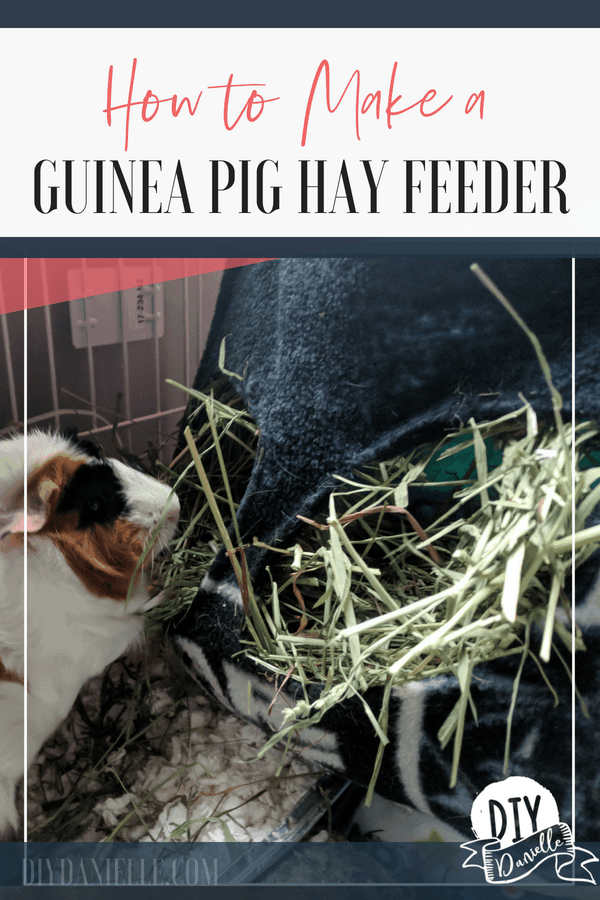 How to make a hay bag for your guinea pigs. This bag allows them to get inside their hay so they don't strain their necks. They love to burrow in the hay!
