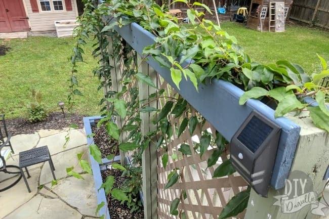 Garden trellis that serves as a privacy planter too.