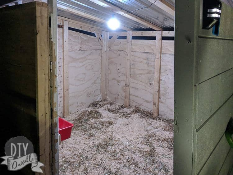 goat shed lighting  of