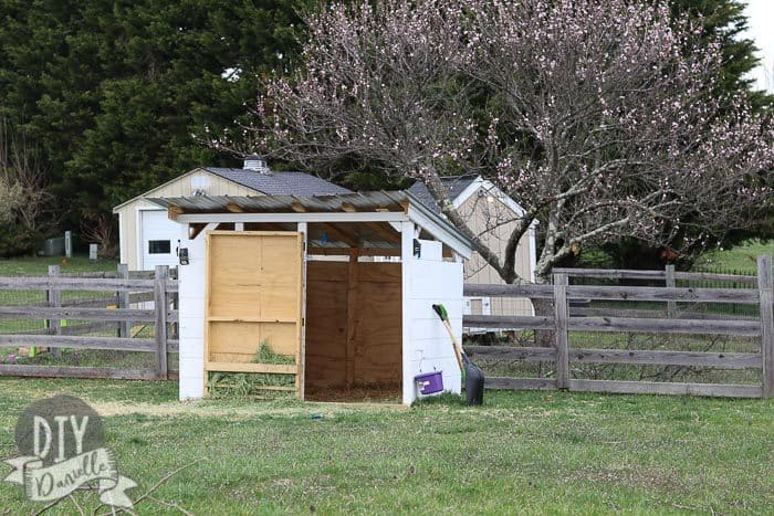 6x8' goat shed with a door and galvanized roofing. Peach tree in blossom in the back.