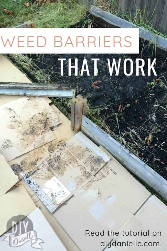 Weed barriers that work: Here are some free and cheap alternatives to landscape fabric!