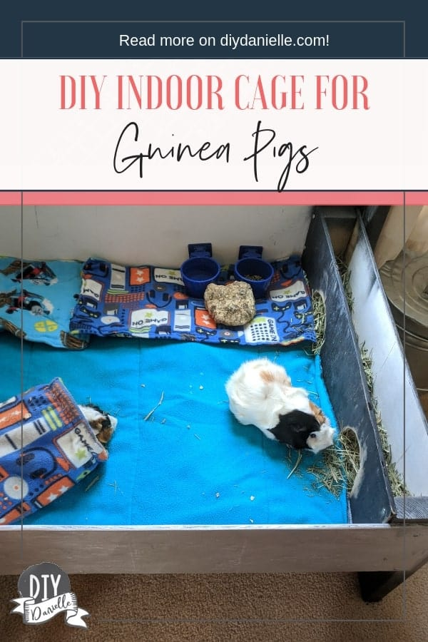 DIY wood indoor guinea pig cage. This was a project I threw together with a bunch of scrap wood.