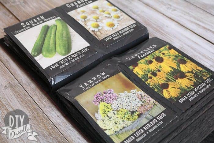 Seed packets organized neatly inside a photo album.