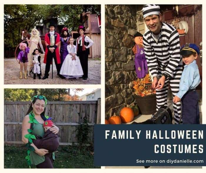 Family Of 4 Halloween Costumes 2019.Family Halloween Costumes 2019 Diy Danielle