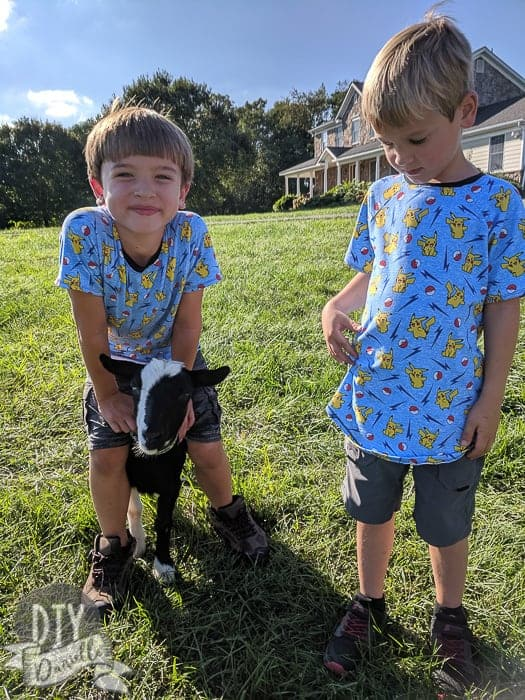Pokemon shirts made with a raglan style shirt pattern. Two boys with matching shirts and a baby goat.