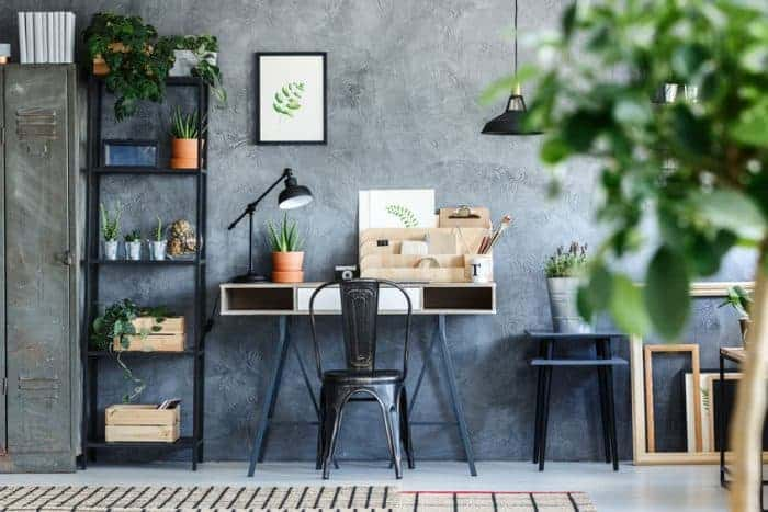 Bright office setup with indoor plants to clean the air in the room.