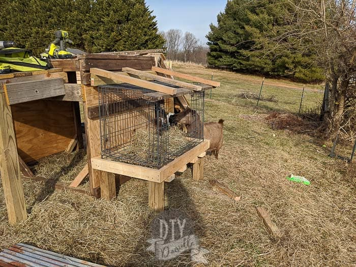 Building a top for the hay feeder.