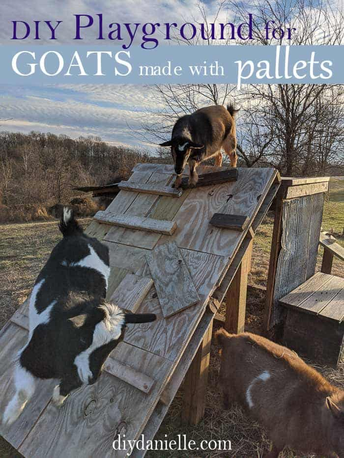 How to make a play structure for your goats using a pallet and scrap wood!