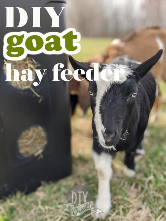 DIY Goat Hay Feeder that rolls on wheels and is easy to move! Fits a square bale of hay.