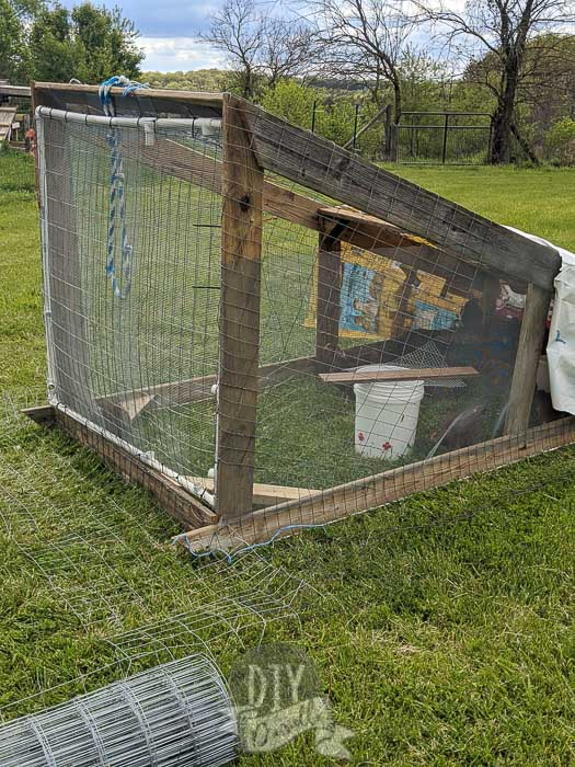 Front side view of our DIY chicken tractor made with scrap wood and pvc