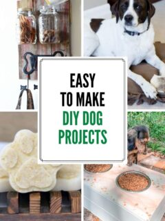 28 diy dog projects