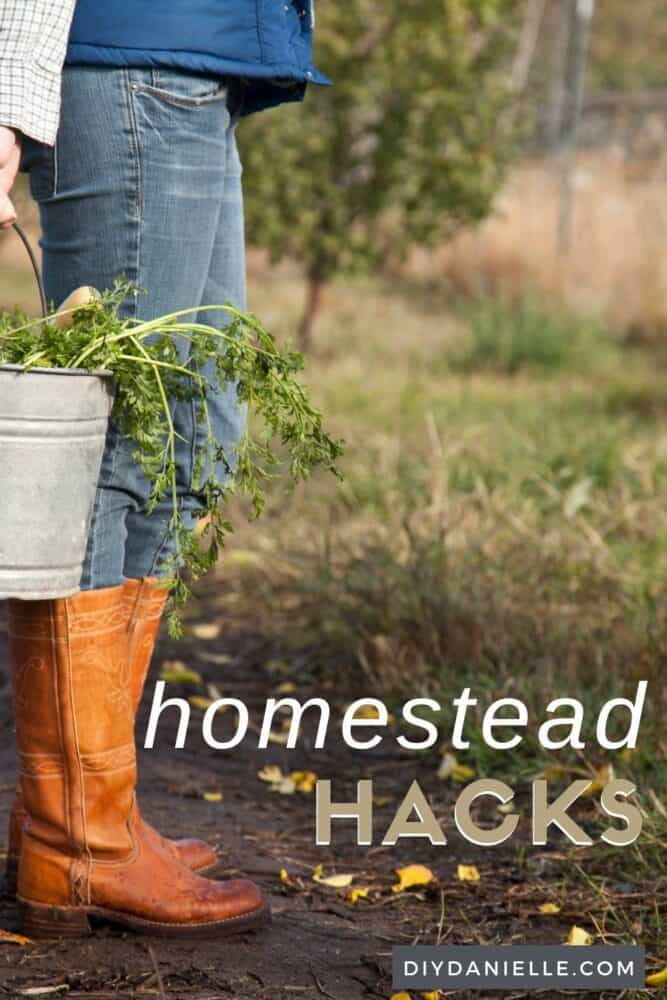 Homestead hacks: ways to make farming easier.