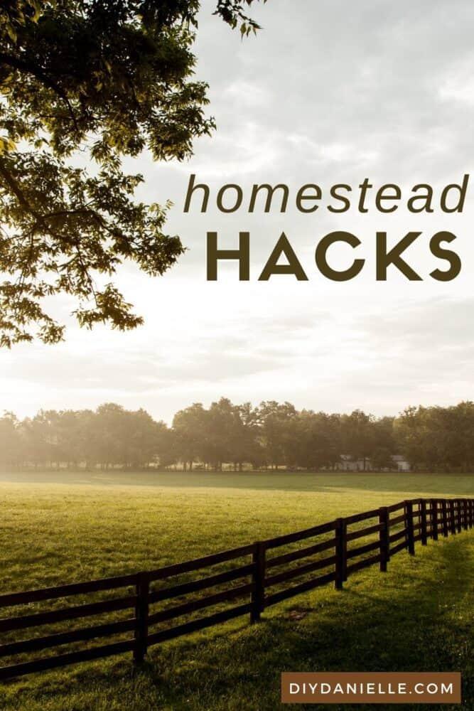 Homestead hacks to make your farm work easier.