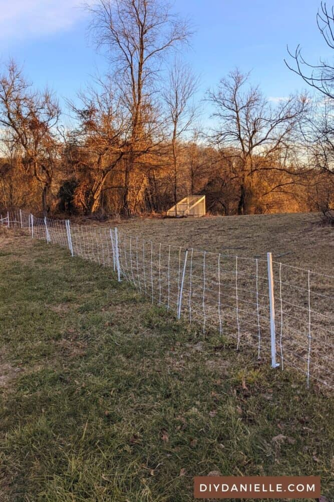 Electric netting fence installed in backyard