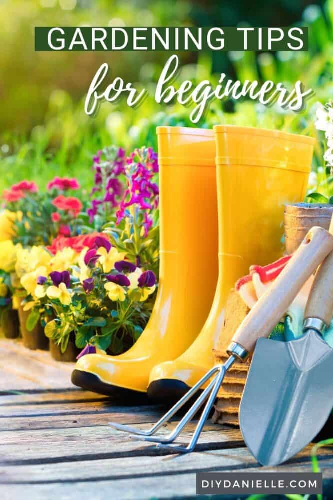 Gardening tips for beginners: Photo of a garden and yellow rain boots.
