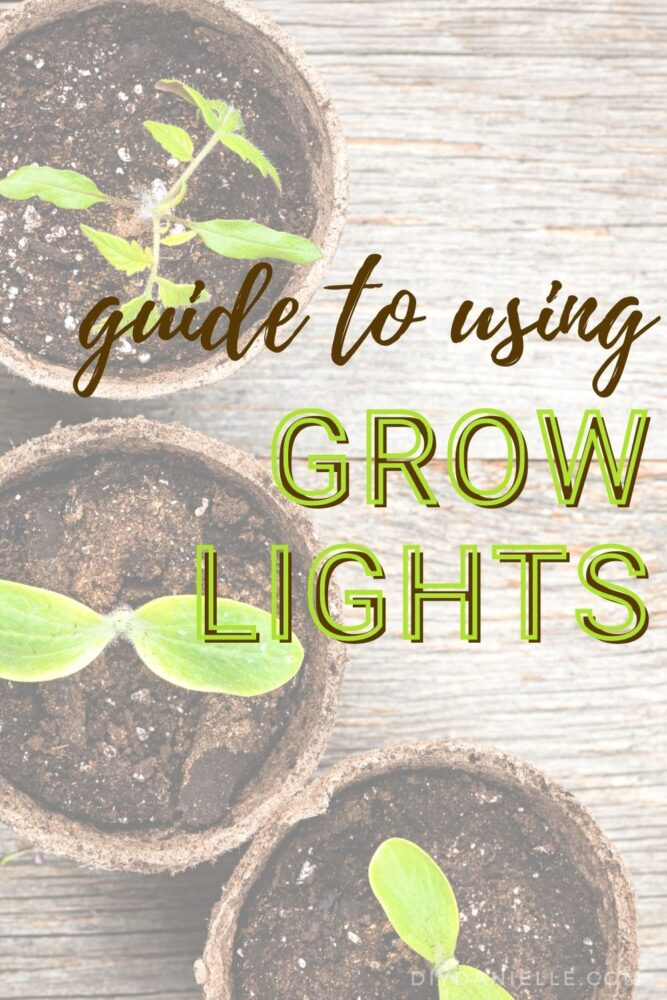 Guide to Using Grow lights: Everything you need to know about Indoor gardening with grow lights: What are grow lights? What type should I buy? How do I use them?