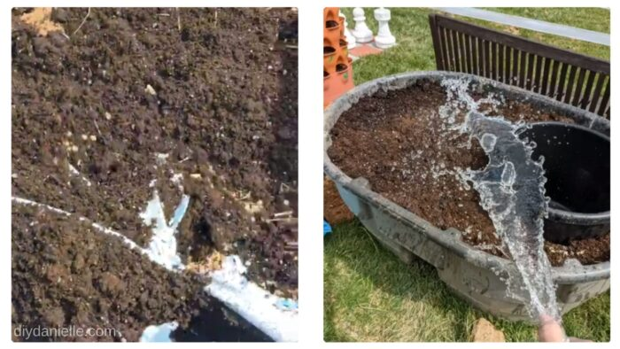 Adding soil and watering it all.